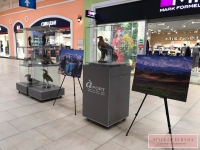 The largest mall in the country «Aport» opens a unique exhibition «The World of Birds»