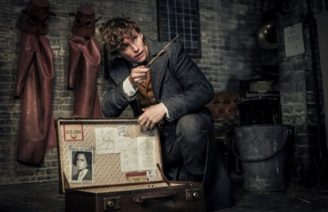 The pre-premiere of «Fantastic Beasts: The Crimes of Grindelwald»